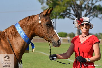 Lorraine Scott presented her Razara Allianah to win the class for Purebred Arabian Mare or Filly.