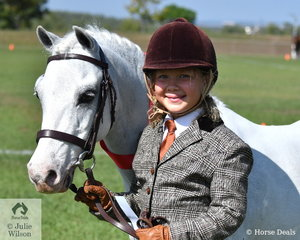 Isabella Seipel exhibited her delightful  Brenley Oliver Twist to take out 2nd place Welsh Gelding.