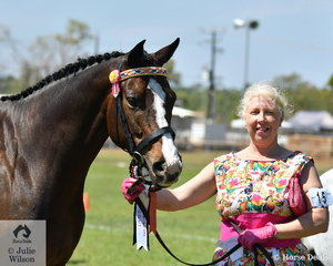 Tammy Shepherd was pleased when her Valentina took second place in the strong class for Territory Breed exhibit.