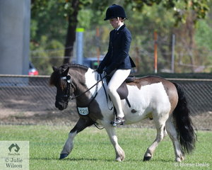 Kate Shenton produced a perfect workout riding Jennifer McDonalds shetland, Floyd to win the Childs Show Pony..
