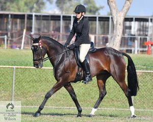 Lorraine Scott rode her Standardbred Royal Pride to win the SHC Rider over 18 years.