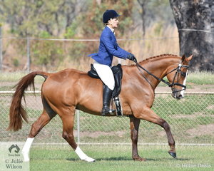 Anna Thompson rode Byalee Gift to win the Rider 35 and over.