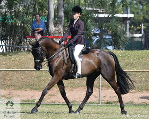 Amy Fisher rode the Warmblood Adloo Rosinante to 2nd place in the Rider 16 and under 18.