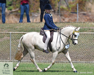 Nine year old Ashleigh Overall and her wonderful Welsh pony Glynyarra Park Liberto had a wonderful day at the show, taking out Champion Rider under 14 years, Champion Hunter pony and Supreme Hunter Exhibit.