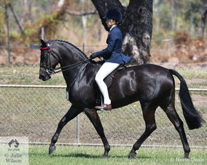 Ally Reynolds riding Miss Melody was declared Champion Rider 14 to 18 years and Supreme Rider of the show.
