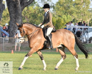 Elisha Horne rode El Nino Effect to take out the Champion Show Hunter Hack.