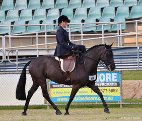"""Winner of the Sidesaddle Galloway class """"Crosswynds Ebony"""" and Amanda Proctor. Showing their versatility they also won the Working Hunter Galloway event."""