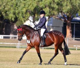 "Jade McCusker's ""Bella Vixen"" was Runner Up Small Saddle Horse."