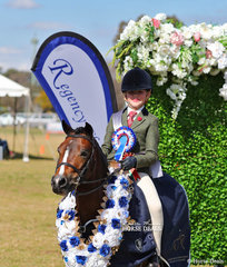 "Champion Small Hunter Pony went to Brooke Doolan's exhibit ""Woranora Promise""."