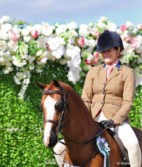 """""""Mirinda Foxtrot"""" was ridden by Emma Adams to take Runner Up in the Small Show Hunter Pony event."""