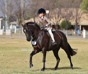 """Champion Large Show Hunter Pony """"Owendale Rembrandt"""" and Georgia Cronin. Georgia also won her Rider 9-12yrs event."""