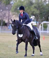 "Kim Martin rode Lisa Wilczak's ""Dinki Di Party Girl"" to win Champion Large Hunter Galloway."