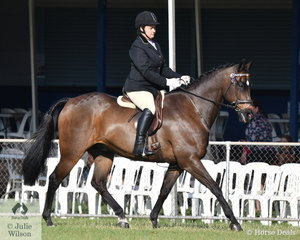 Tori King rode Take A Chance to third place in the Novice Hack class.