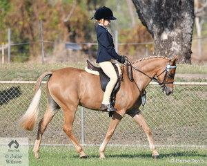 Denver Vivian rode Mallawa Park Just Kiddin to take out the Reserve Champion Pony Hack.
