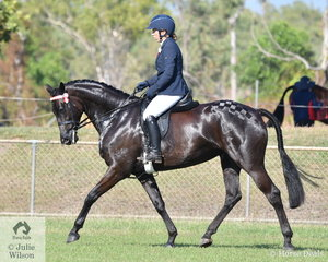 Jacqui Gould rode her Warmblood mare, Why Waltz Furst Lady Love to be declared Reserve Champion Hack.
