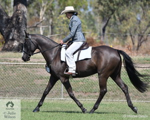 Linda Clarris rode her good looking mare True Lee Tribal to win the class for Australian Stock Horse Hack.