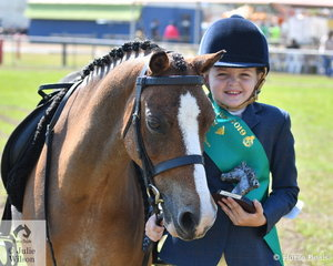 Pippa Triggs with the help of Welsh Pony Glynyarra Park Deacon won the Sub-Junior encouragement award.