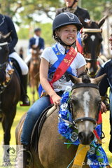 Liberty Walker Sangster won a number of ribbons riding Glynyarra Park Cinnibarr in the Sub-Junior ring.