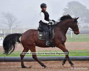 """Debra Brown riding """"Regal Ilse"""" in the Level 2 representing Echuca"""