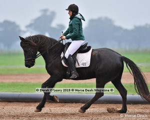 """Jenny Fenech riding """"MCM Isabeau"""" representing Macedon Ranges DC in the Level 4"""