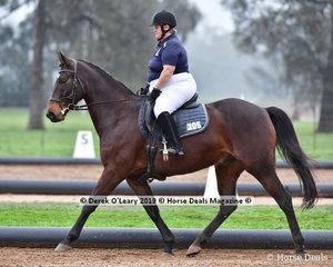 "Helen Gray riding ""Rango the mango"" in the Level 2 representing SEDA"