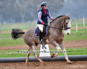 """Jodee Young riding """"Gus"""" in the Level 2 representing King Valley"""