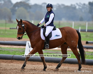 """Patty Lewis riding """"Des"""" in the Level 3 representing Goulburn Valley SJC"""