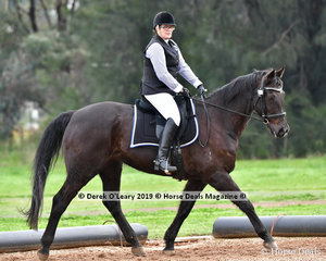 "Lisa Elward rode ""Terula Grand Cheval"" in the Level 2 representing Acheron Valley ARC"