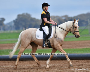 "Dianne Temby riding ""Merool Elegance"" representing Sugarloaf ARC"