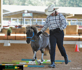 Floating over the poles in the Youth Trail class was Arianne Hunt with her horse Jules at the Queensland AMHS State Show 2019 held in Caboolture.