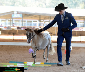 Leading his horse through the State Championship Youth Trail Age 14 - 17 was William Richards at the Queensland AMHS States.