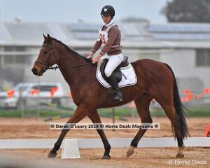 """Chloe Outred riding """"Cloroy Costa"""" in the Pony Club Grade 3 representing Bacchus Marsh Pony Club"""