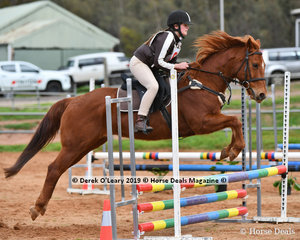 """Chelsea Wilkins in the Pony Club Grade 4 Show Jumping riding """"Negotiable"""" representing Leighdale Pony Club"""