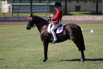 Champion Junior Rider Anastasia Blanch from Murwillumbah