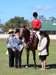 Tremayne Royal Opera ridden by Charlee Anthony from Murwillumbah was Supreme Hack pictured with Judges Eleanor Gerry, Megan Perrin and Rachael Spring