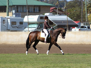 Isabelle Ellis from Grafton working out for a win in the senior rider class