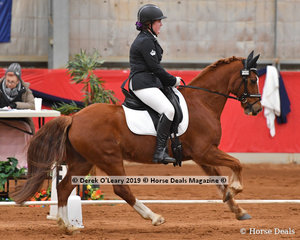 """Skye Wright placed 5th in the Elementary 3A riding """"Kamber Merfyn"""" with a total score of 62.223%"""