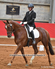 """Tallyho Magnifique"" ridden by W Schutz in the Elementary 3A"