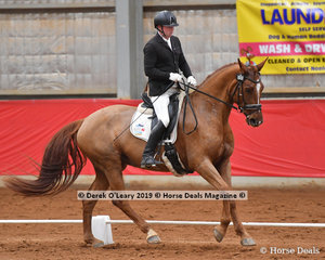 """""""JB Amoretta"""" in the Novice Freestyle ridden by Jason Dins"""