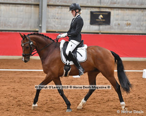 """Winner of the Novice Freestyle, Emmalee Weston riding """"Hollands Bend Danseur"""" with a winning score of 71.813%"""