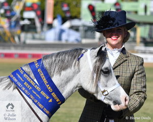 Chloe Ireland did the honours with her own and Kay Ireland's, 'Osory Pamina' (Shore Brooks How Ever imp NL/Osory Paloma) that was declared Best Youngstock Welsh Mountain Pony.