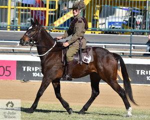 Matthew Langdon rode 'Clancy' to win the Best Troop Horse class.