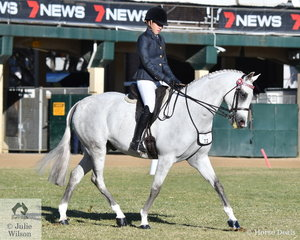 Jessica Fedrick rode Rebecca Fedrick's, 'Ellabre Debonaire' to win the class for Part Welsh Under Saddle.