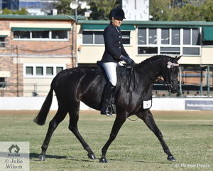 Julieanne McCool rode her, 'Rosedale Secret Attraction' to take third place in the class for Part Welsh Under Saddle.