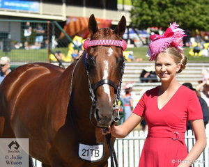Brynn Clarke claimed the Best Presented Horse and Handler Award with the Austin, Lilley and Clarke nomination, 'Easily Written' (Written Tycoon/Ask The Angles)