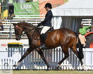 Alexia Fraser rode the Fraser Family's, 'Ready SEQ Go' (Sequalo/Ready To Race) to take fourth place in the class for Thoroughbred Mare Under Saddle.