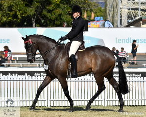 Victorian visitor, Lisa McCann is pictured aboard her Octagonal gelding, 'Bogart' out of Gala Ball during the class for Thoroughbred Gelding Under Saddle.