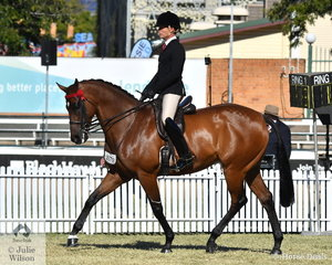 Adam Oliver rode his own and the Universal Stables nomination, 'Mestalla' (Northern Meteor/Villa Valencia) to win the class for Thoroughbred Gelding Under Saddle and claim the Thoroughbred Under Saddle Reserve Championship.