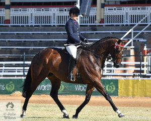 Alexia Fraser rode the Fraser Family's, 'Ready SEQ Go' to second place in teh class for Novice Hack Over 16.2hh
