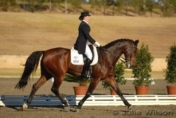 Tabitha Fisher with her 'Montezuma' took 10th place with 58.63% in the Koffels Solicitors ans Barristers Intermediate II.